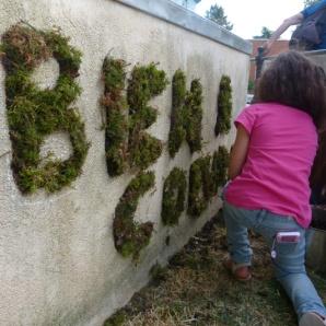 """Tag végétal """"Bien à Cœuilly"""" (21/06/15, à Cœuilly)"""