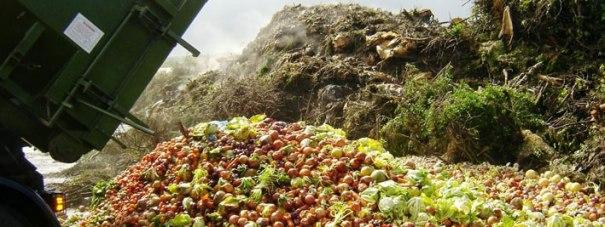 b-food-waste.jpg
