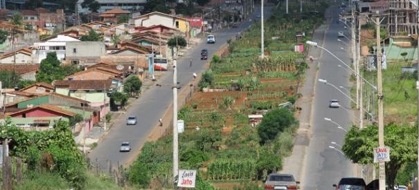 Agriculture-urbaine-Sete-Lagoas.jpg